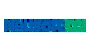 logo_neusoft